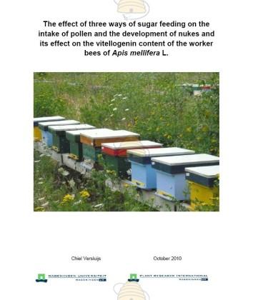 The effect of three ways of sugar feeding on honey bees full report
