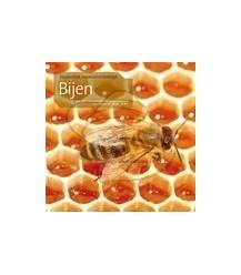 Bijen, fascinerend, essentieel en bedreigd (pdf)