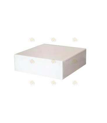 Dak spaarkast wit polystyreen