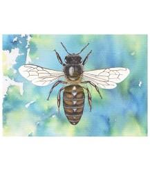Ansichtkaart bovenaanzicht honingbij blauw