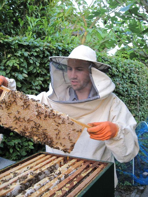De bijen van de imkershop en ik